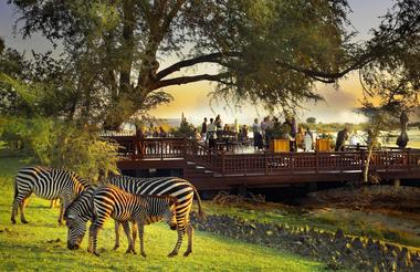 The Sundeck with zebras in the foreground